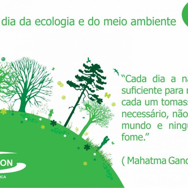 Hoje é dia da ecologia e do meio ambiente